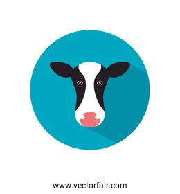 Isolated milk cow flat style icon vector design