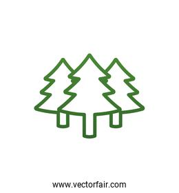 Isolated pine trees gradient style icon vector design