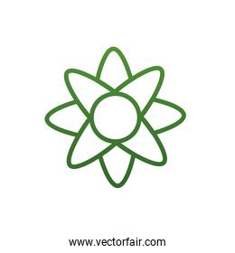 Isolated natural flower gradient style icon vector design