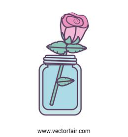 Isolated rose flower inside glass line fill style icon vector design