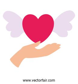 Isolated hand and heart with wings vector design