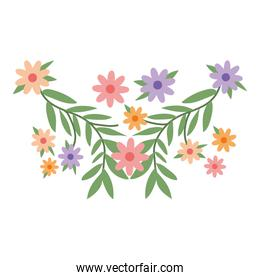 Isolated flowers ornament vector design