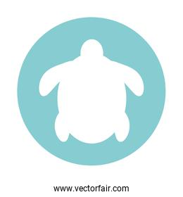 Isolated turtle block style icon vector design