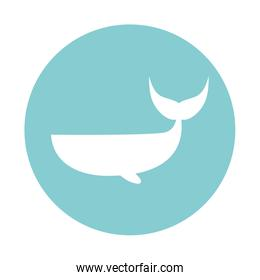Isolated whale block style vector design