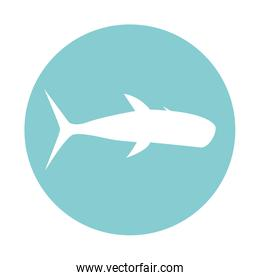 Isolated whale block style icon vector design