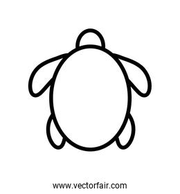 Isolated turtle silhouette style icon vector design