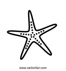 Isolated star silhouette style icon vector design