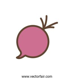 Isolated beet vegetable line and fill style icon vector design
