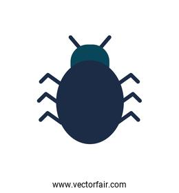 Isolated bug flat style icon vector design