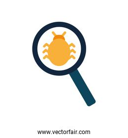 Isolated bug inside lupe flat style icon vector design