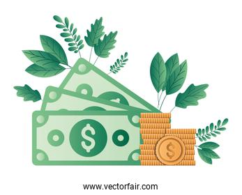 Isolated money bills and coins with leaves vector design