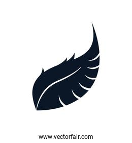 Isolated feather plume silhouette style icon vector design