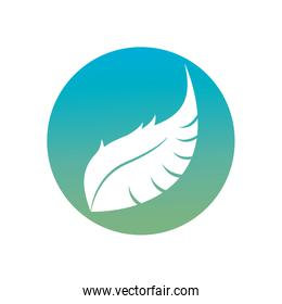 Isolated feather plume silhouette block style icon vector design