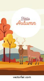hello autumn season scene with reindeer couple