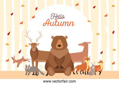 hello autumn season scene with group animals