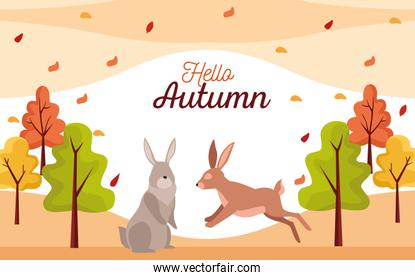 hello autumn season scene with rabbits couple