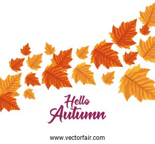 hello autumn season leafs decoration