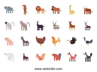 Cute animals cartoons fill style icon set vector design