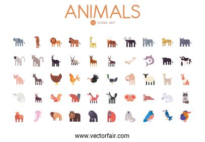 50 cute animals cartoons fill style icon set vector design
