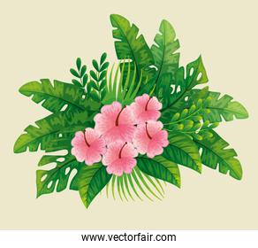 cute flowers pink color with tropical leafs naturals