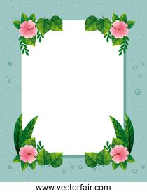 frame of cute flowers pink with branches and leafs