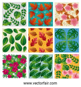 set of backgrounds of flowers and leafs naturals