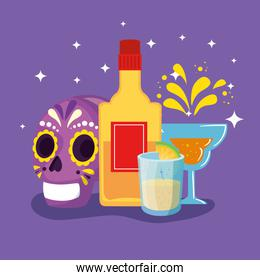 bottle tequila and icons traditional of cinco de mayo
