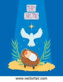 baby jesus in crib and pigeon manger nativity, merry christmas