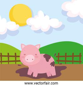 piggy in the mud wooden fence sky farm animals