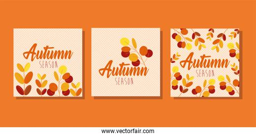 hello autumn season bundle of cards