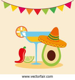 Mexican tequila vector design