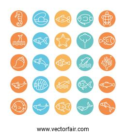 Isolated sea animals line block style icon set vector design