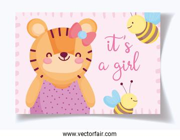 boy or girl, gender reveal its a girl cute tiger and bees card