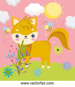 cute animals, little fox in the field with flowers and sky