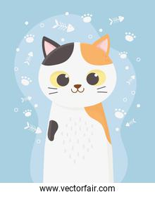 cute cat pet with spots fishbone and paws cartoon