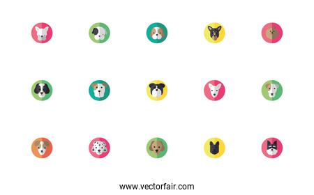 bundle of cute dogs heads icons