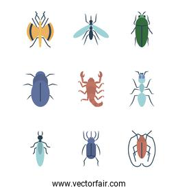 scorpion and insect concept icon set, flat style