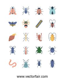 snail and insect concept icon set, flat style