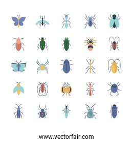ant and insect concept icon set, flat style