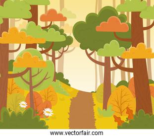 landscape path trees forest flowers nature foliage background