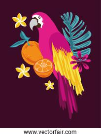 tropical fruits and flowers with parrot