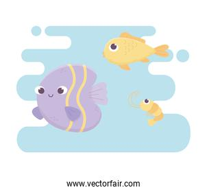 fishes and shrimp life cartoon under the sea