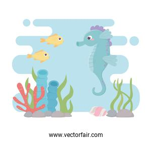 seahorse fishes life coral reef cartoon under the sea