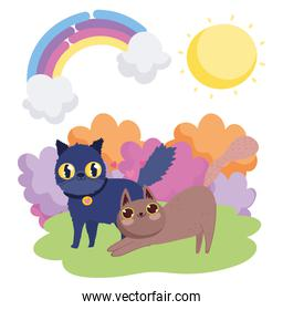cartoon black and brown cats in grass sky pets