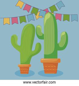viva mexico celebration with cactus and garlands hanging