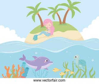 mermaid dolphin fishes under the sea