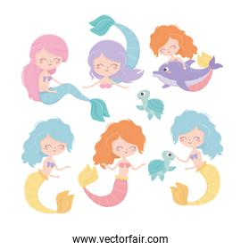 mermaids turtles dolphin cartoon under the sea