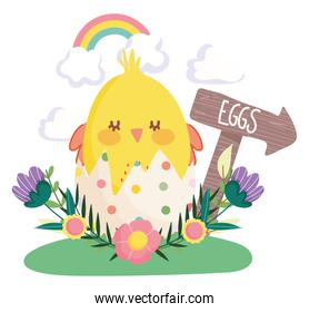 happy easter chicken in eggshell flowers rainbow