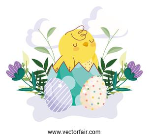 happy easter cute chicken in eggshell eggs flowers leaves decoration