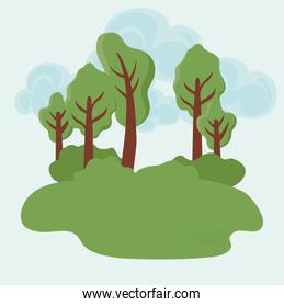 tree plants with background landscape